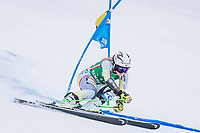 28th December 2020; Semmering, Austria; FIS Womens Giant Slalom World Cu Skiing;  Ragnhild Mowinckel of Norway in action during her 1st run of women Giant Slalom of FIS ski alpine world cup at the Panoramapiste in Semmering