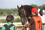 September 1, 2014: Smarty Jones Stakes contender Just Call Kenny awaits his rider, Paco Lopez (left) in the paddock. Protonico, Joe Bravo up, wins the grade 3 Smarty Jones Stakes at Parx Racing in Bensalem, PA. Trainer is Todd Pletcher. Owner is International Equities Holding, Inc. ©Joan Fairman Kanes/ESW/CSM