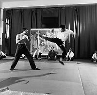 Мастер Востока (1992)
