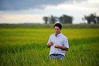URUGUAY Villa Sara , rice mill Saman, processing of GMO free rice for export / Reismuehle Saman, Verarbeitung von GVO freiem Reis fuer den Export, Raùl Uraga Berrutti, Agronom der Reismuehle Saman prueft den Reifegrad des Reis auf einem Feld bei Villa Sara