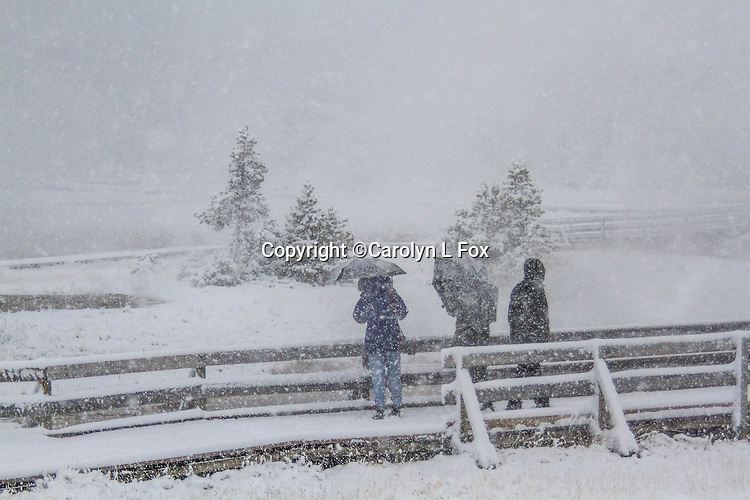 Tourists walk on a boardwalk at Fountain Paint Pots in Yellowstone.