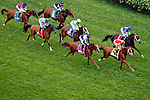 LOUISVILLE, KY - MAY 07: The field passes the grandstands for the first time during the Churchill Distaff Turf Mile on May 7, 2016 in Louisville, Kentucky. (Tepin #1, ridden by Julien Leparoux, won the race. (Photo by Jon Durr/Eclipse Sportswire/Getty Images)