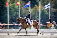 Le Grand Complet 2020. Haras du Pin. Dressage. CCIO4*<br /> Jonelle PRICE (NZL). GROVINE DE REVE<br /> Photographie Eric KNOLL