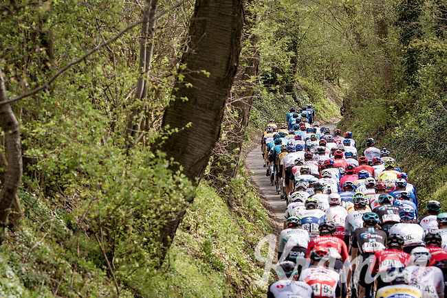 narrowing<br /> <br /> 55th Amstel Gold Race 2021 (1.UWT)<br /> 1 day race from Valkenburg to Berg en Terblijt; raced on closed circuit (NED/217km)<br /> <br /> ©kramon