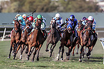 HALLANDALE BEACH, FL - FEB 10:Elysea's World #8 (left)trained by Chad C. Brown with Javier Castellano in the irons swings wide at the turn on way to winning the $150,000 Suwannee River Stakes (G3) at Gulfstream Park on February 10, 2018 in Hallandale Beach, Florida. (Photo by Bob Aaron/Eclipse Sportswire/Getty Images)