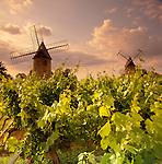 France, Aquitaine, St. Emilion: Vineyard & Windmills Under Lilac Sky | Frankreich, Aquitanien, St. Emilion: Windmuehle und Weinberg