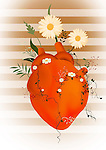Human heart with flowers growing depicting herbal medications