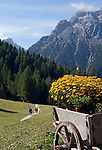 Italy, South Tyrol, Alto Adige, Dolomites, Moso: hiking region Prati di Croda Rossa