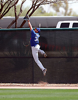 Jacob Scavuzzo - Los Angeles Dodgers 2018 spring training (Bill Mitchell)