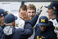 Michigan Wolverines catcher Harrison Wenson (7) is greeted in the dugout after hitting a home run against the Michigan State Spartans on May 19, 2017 at Ray Fisher Stadium in Ann Arbor, Michigan. Michigan defeated Michigan State 11-6. (Andrew Woolley/Four Seam Images)