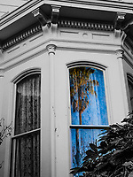 Shades of the present with echoes of the past.  A palm tree is reflected in the lace curtained window of Meek Mansion