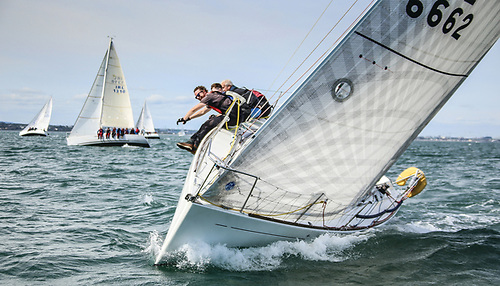 There was a nine boat Beneteau 31.7 fleet for Saturday's DBSC race training