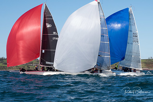Racing is taking place in Cork Harbour instead of the originally planned Baltimore Photo: Bob Bateman