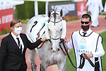 March 27 2021: HAJRES (TN) #7, in the post parade for the Dubai Kahayla Classic at Meydan Racecourse, Dubai, UAE. Shamela Hanley/Eclipse Sportswire/CSM