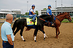 LOUISVILLE, KENTUCKY - APRIL 30: Untrapped, owned by Michael Langford and trained by Steve Asmussen, is led to the track by assistant trainer Scott Blasi at Churchill Downs on April 30, 2017 in Louisville, Kentucky. (Photo by Jon Durr/Eclipse Sportswire/Getty Images)