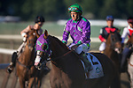June 7, 2014: Victor Espinoza, aboard California Chrome, reacts after not winning the Belmont Stakes while Joel Rosario aboard Tonalist (back) is interviewed after winning on Belmont Stakes Day in Elmont, NY. Jon Durr/ESW/CSM