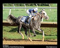 As seen in the Arabian Horse Galleries exhibit at The Kentucky Horse Park<br /> <br /> Line Dancer .The Pratt / Markel World Series Handicap