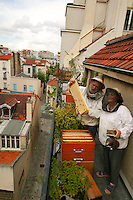 In Paris. The Malvezins observe <br />