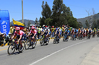 TUNJA - COLOMBIA, 11-02-2020: El pelotón de ciclistas durante la segunda etapa del Tour Colombia 2.1 2020 con un recorrido de 152,4 km, que se corrió entre Paipa y Duitama, Boyacá. / The main group of riders during the second stage of 152,4 km as part of Tour Colombia 2.1 2020 that ran between Paipa and Duitama, Boyaca.  Photo: VizzorImage / Darlin Bejarano / Cont