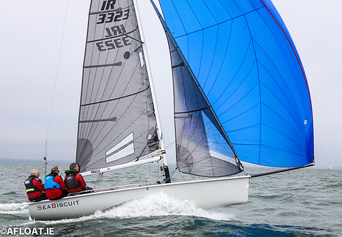 Barry Glavin and Niall O'Riordan'sSB20 Sea Biscuit was a race winner in Saturday's DBSC racing