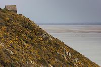 Europe/France/Normandie/Basse-Normandie/50/Baie du Mont-Saint-Michel: Env de Saint-Jean-Le-Thomas: Falaises de Champeaux - Cabane Vauban  //    France, Manche (50), Champeaux, Mont Saint Michel bay, Champeaux cliff  cabane Vauban