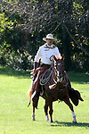 A cowboy riding his horse in the early morning