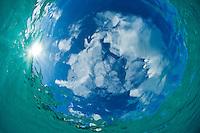 Looking up towards the sky through clear Caribbean water.Trunk Bay, St John.US Virgin Islands