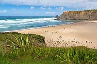 Portugal, Faro, Algarve, Southwest Alentejo and Vicentine Coast Natural Park, Praia de Odeceixe, west coast of the Algarve