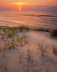 Cape Hatteras National Seashore, NC    <br /> Sunrise over the calm Atlantic from Hatteras Island with beach grasses and barrier dunes on north Carolina's Outer Banks