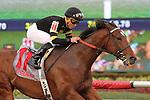 February 21, 2015: #11 Long On Value (VA) with jockey Joel Rosario on board wins the Canadian Turf Stakes G3 at Gulfstream Park in Hallandale Beach, Florida.    Liz Lamont/ESW/CSM