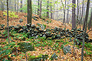 Stone wall at Madame Sherri Forest in Chesterfield, New Hampshire during the autumn months.