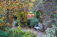 Digging Dog Nursery - Autumn
