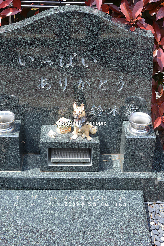 """Individual graves for lost loved pets. Gravestones are designed with thoughts.  grave stone has got message as """"Many thanks from Suzuki family""""<br /> <br /> Jikeiin is the biggest pet graveyard in western suburb of Tokyo.  This has founded in 1921 and 13000m2 land space.  They have 16 cremation machine which can cremate from small animal like turtle or birds to big animals like tigers and bears.  They provide buddism style funeral ceremony and graves to pet owners who have lost their loved pets.  Jikeiin is the non-sectarian temple."""