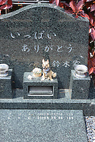 "Individual graves for lost loved pets. Gravestones are designed with thoughts.  grave stone has got message as ""Many thanks from Suzuki family""<br /> <br /> Jikeiin is the biggest pet graveyard in western suburb of Tokyo.  This has founded in 1921 and 13000m2 land space.  They have 16 cremation machine which can cremate from small animal like turtle or birds to big animals like tigers and bears.  They provide buddism style funeral ceremony and graves to pet owners who have lost their loved pets.  Jikeiin is the non-sectarian temple."