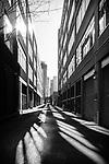 2.17.18 - Alley of Light.....