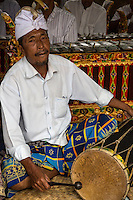 Jatiluwih, Bali, Indonesia.  Drummer in a Gamelan Orchestra,  Luhur Bhujangga Waisnawa Hindu Temple.  He is wearing a sarong and an udeng, the traditional male Balinese head cloth.