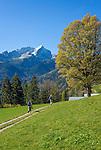 Germany, Upper Bavaria, Werdenfelser Land, Garmisch-Partenkirchen: hiking region and alpine pasture above Garmisch-Partenkirchen with summit Alpspitze | Deutschland, Bayern, Oberbayern, Werdenfelser Land, Garmisch-Partenkirchen: Wander- und Almengebiet gebiet oberhalb von Garmisch-Partenkirchen mit der Alpspitze