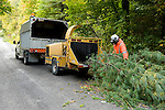Hydro electric workers clearing brush from under rural electical transmission line