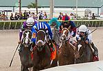 January 30, 2021:  #7 Zaajel with jockey Luis Saez on board, wins the Forward Gal GIII Stakes at Gulfstream Park in Hallandale Beach, Florida. LizLamont/Eclipse Sportswire/CSM
