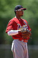 St. Louis Cardinals Leobaldo Pina during a minor league spring training game against the Miami Marlins on March 31, 2015 at the Roger Dean Complex in Jupiter, Florida.  (Mike Janes/Four Seam Images)