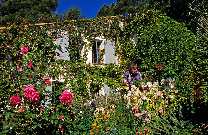 Man working in his garden, Provence. France.