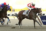 April 5, 2014: Wicked Strong with Rajiv Maragh wins the 90th running of the Grade 1 Twinspires.com Wood Memorial for 3-year olds, going 1 1/8 mile at Aqueduct Racetrack.  Trainer: James Jerkins. Owner: Centennial Farms. Sue Kawczynski/ESW/CSM