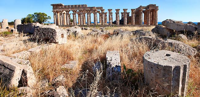 Greek Dorik column drums fallen at Temple F at Selinunte, Sicily Greek Dorik Temple columns of the ruins of the Temple of Hera, Temple E, Selinunte, Sicily
