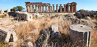Greek Dorik column drums fallen at Temple F at Selinunte, Sicily Greek Dorik Temple columns of the ruins of the Temple of Hera, Temple E, Selinunte, Sicily