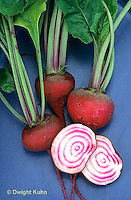 HS62-003x  Beet - red beets - Chioggia variety