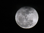 The perigee, or super full moon, rises above Gardnerville, Nev., on Saturday, March 19, 2011. Photo by Cathleen Allison