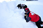 Ski patrolman Zach Springer and his avalanche rescue dog, Emma - during a training drill at Crested Butte, Colorado