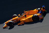 Fernando Alonso at Indianapolis