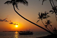 Sunset over Coconut Palm Trees, anchored traditonal dive boat and an offshore island from Wakatobi Dive Resort, Southeast Sulawesi, Indonesia.