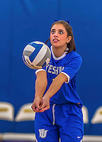 26 October 2014: Yeshiva University Maccabee Libero Shaina Hourizadeh, a Sophomore from Englewood, NJ, warms up prior to a game against the Maritime College Privateers, at the College of Mount Saint Vincent, in Riverdale, NY. The Privateers defeated the Maccabees 3-0 in the NCAA Division III Women's Volleyball Skyline matchup. Mandatory Credit: Ed Wolfstein Photo *** RAW (NEF) Image File Available ***